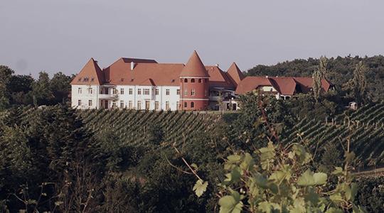 Schloss_Thaller_540